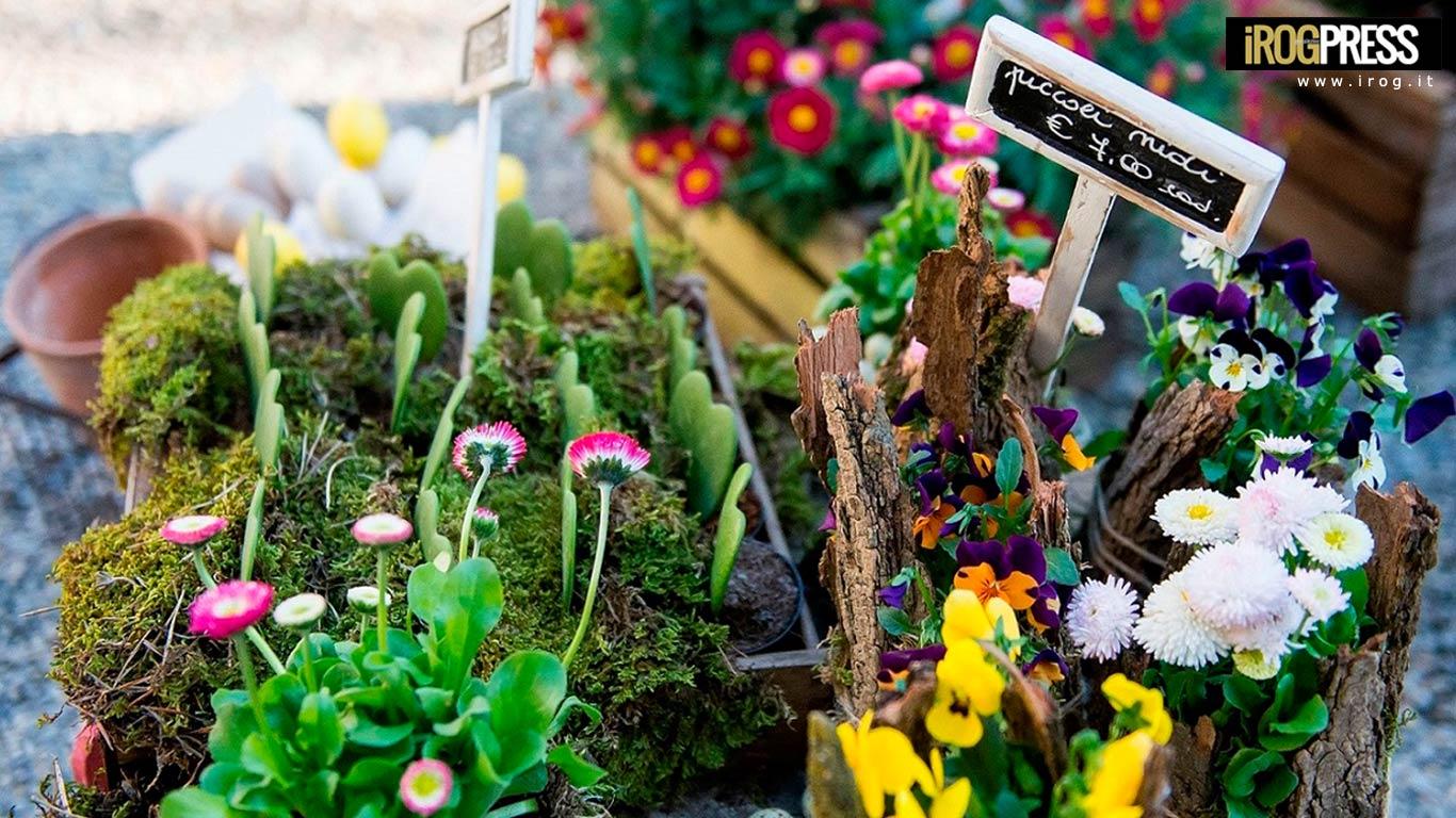 A milano un soffio di primavera mostra e mercato di for Mostre mercato fiori 2017